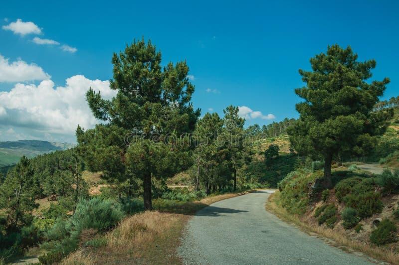 Estrada do campo que passa com a paisagem montanhosa fotografia de stock