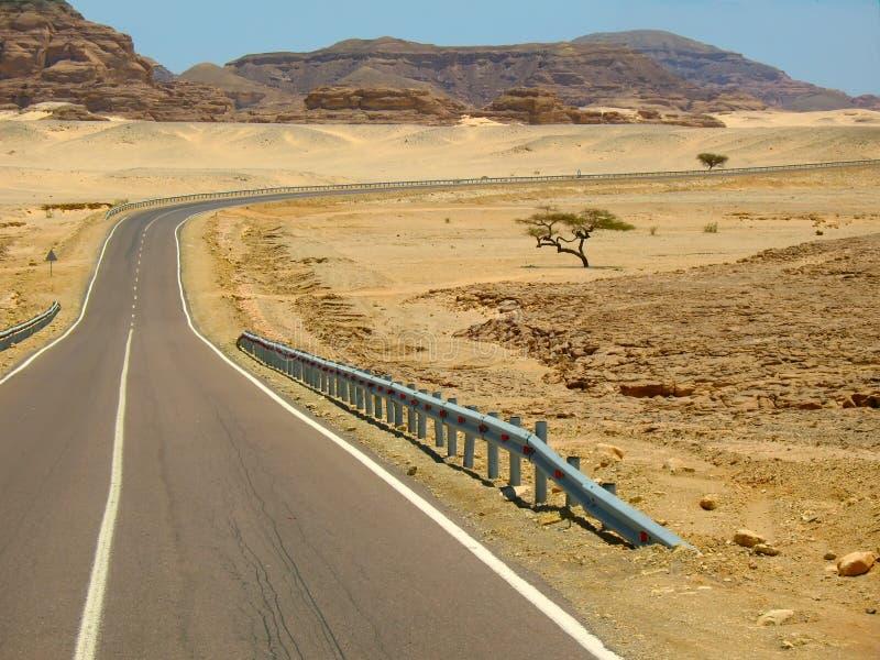 Estrada do deserto em Egito fotos de stock royalty free
