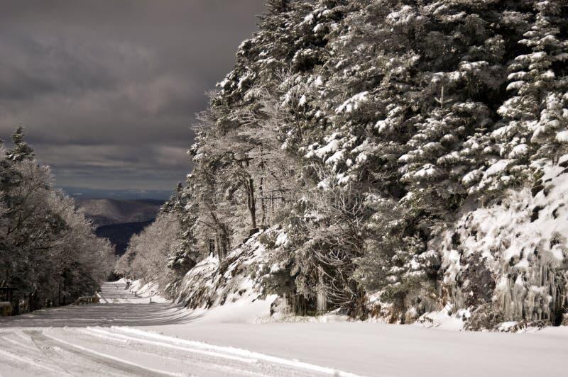 Download Estrada do inverno imagem de stock. Imagem de branco - 16861335