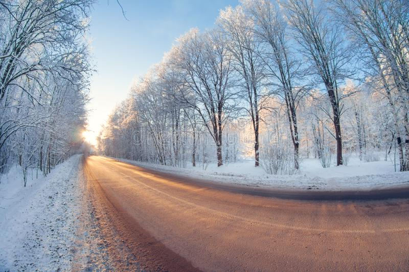 Estrada do inverno no parque no dia gelado ensolarado opinião de lente de fisheye da perspectiva da distorção foto de stock