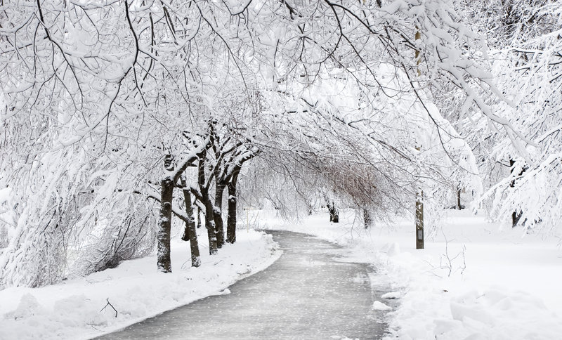 Estrada do inverno sob as árvores imagens de stock