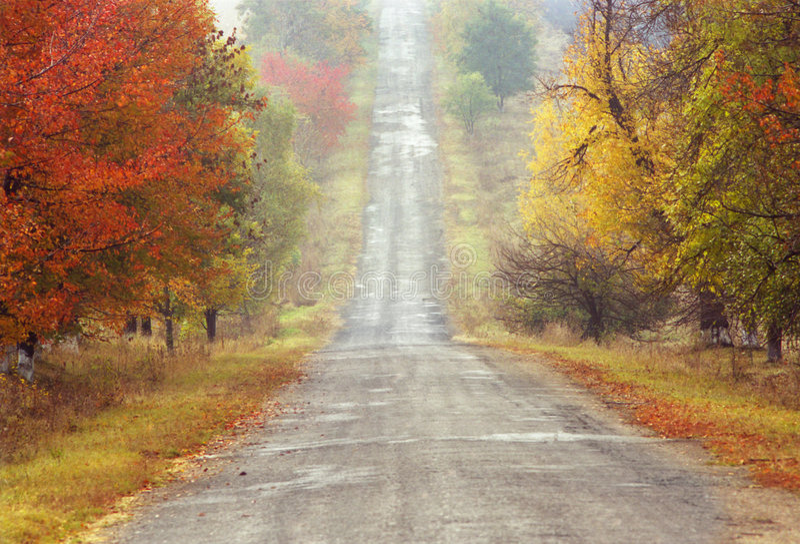Estrada do outono imagem de stock