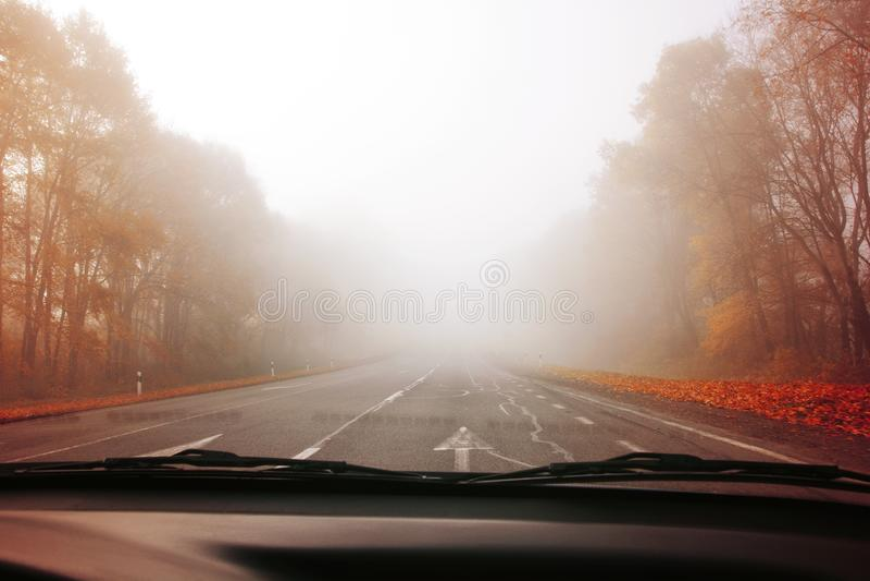 Estrada do outono no foco macio da floresta enevoada toned imagem de stock royalty free