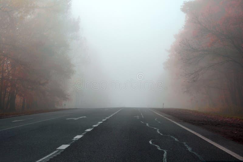 Estrada do outono no foco macio da floresta enevoada toned imagens de stock