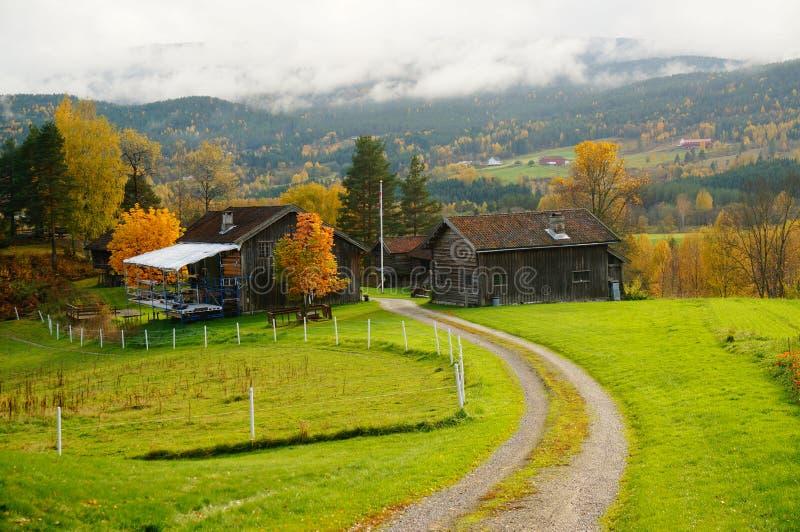 Estrada do outono sobre a pastagem da exploração agrícola em Telemark, Noruega imagens de stock royalty free