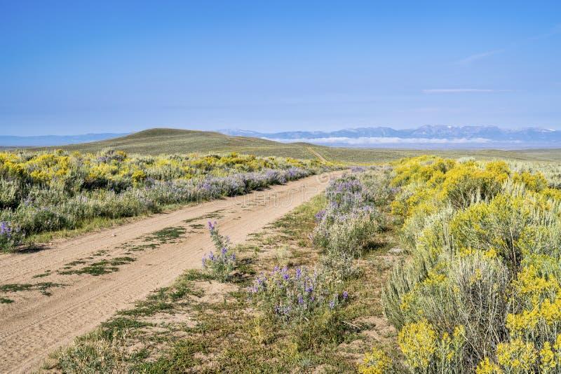 Estrada do rancho com wildflowers imagens de stock royalty free