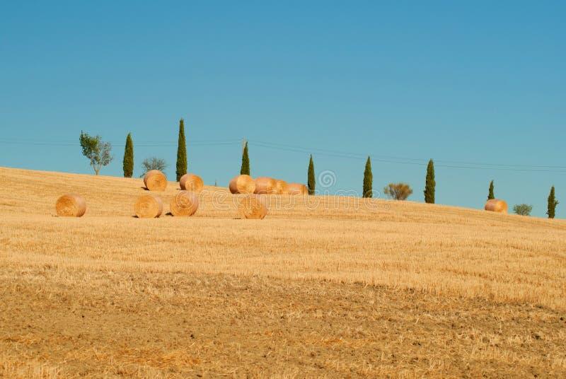 Estrada dos ciprestes em montes tuscanian Italy imagens de stock royalty free