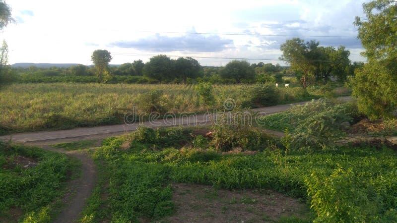 Estrada e agricultura da vila das Índias foto de stock