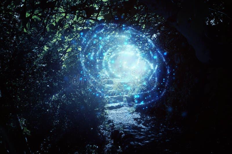 Estrada e escadas de pedra na floresta escura m?gica e misteriosa com luz m?stico e vaga-lume do sol Conceito do conto de fadas ilustração royalty free