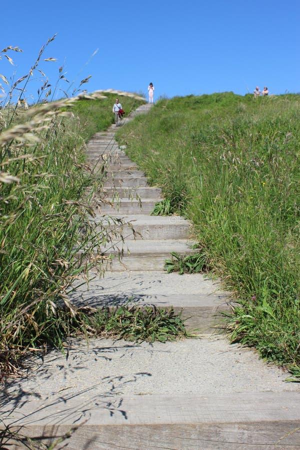 Estrada e escadas no dia ensolarado da natureza fotos de stock royalty free