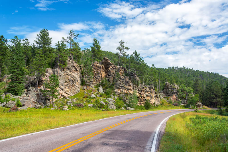 Estrada em Custer State Park imagem de stock