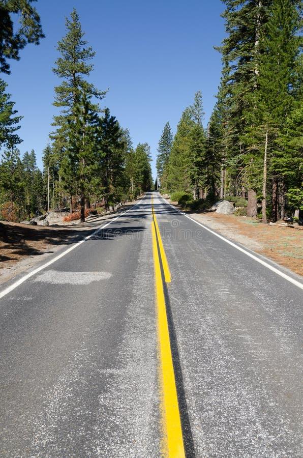 Estrada em Yosemite foto de stock royalty free