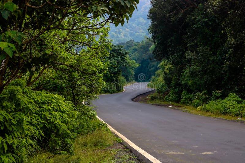 Estrada   Floresta   Tahini Ghat fotos de stock royalty free