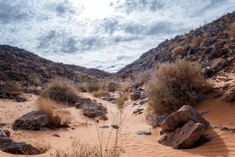 A estrada longa do deserto imagens de stock royalty free