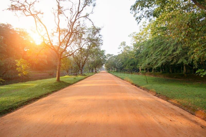 a estrada marrom da argila entre a selva, as árvores verdes ao longo das bordas do ro foto de stock royalty free