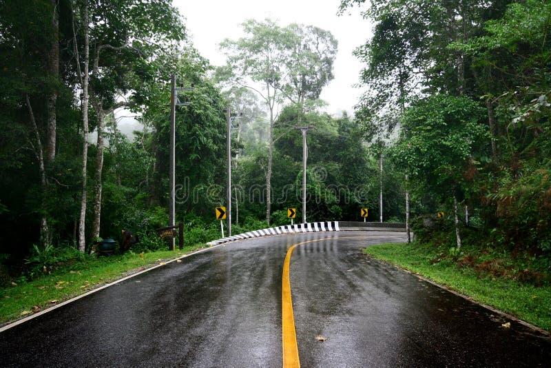 Estrada Molhada Da Curva Fotografia de Stock
