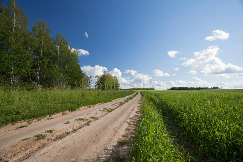 Estrada na área rural fotografia de stock royalty free