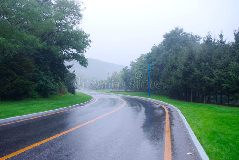 A estrada na chuva imagens de stock