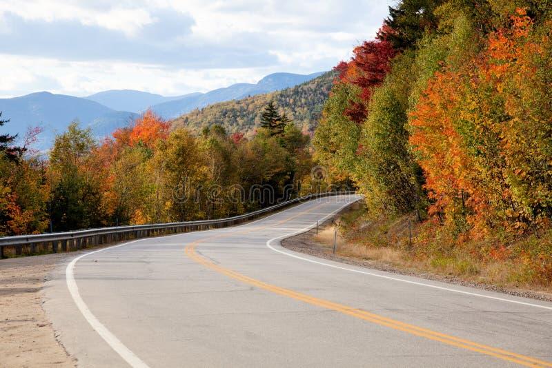 Estrada na floresta do outono fotografia de stock royalty free