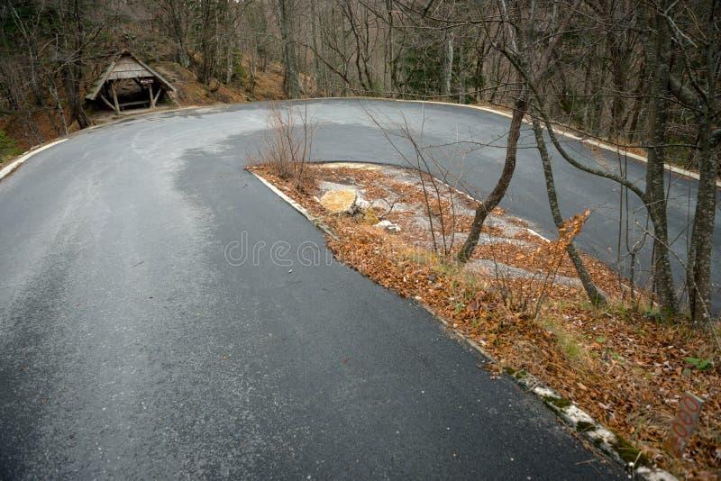 Estrada na paisagem da floresta do outono foto de stock