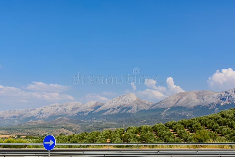 Estrada nas montanhas e nas azeitonas imagem de stock