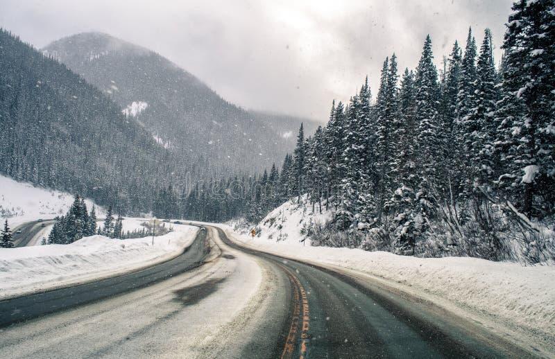 Estrada nevado da montanha de Colorado imagem de stock royalty free