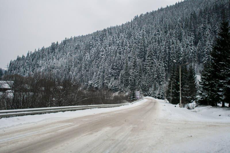 Estrada nevado do inverno e árvores nevados da floresta wallpaper imagem de stock