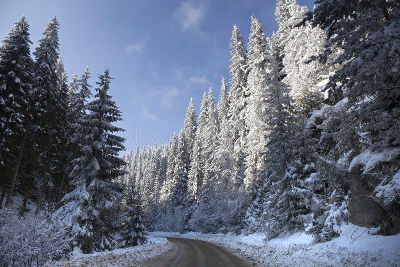 Estrada nevado do inverno na montanha imagem de stock