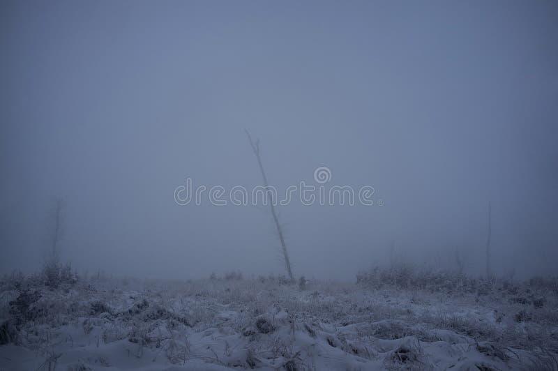 Estrada nevado em montanhas Carpathian pequenas na manhã fria do inverno imagens de stock