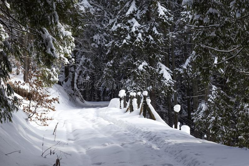Estrada nevado na estação do inverno no Romanian foto de stock royalty free