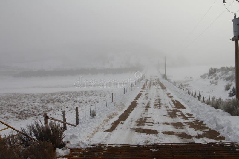 Estrada nevoenta à nenhumaa parte, trilhas cobertos de neve fotografia de stock royalty free