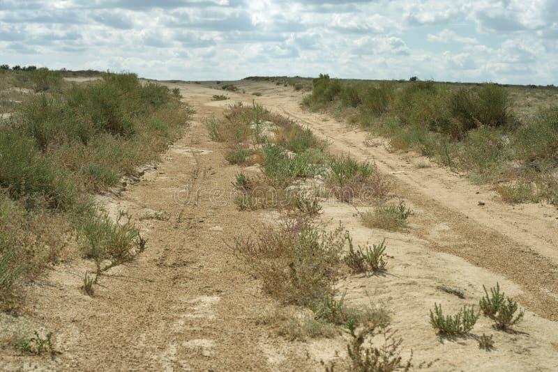Estrada no deserto. foto de stock royalty free
