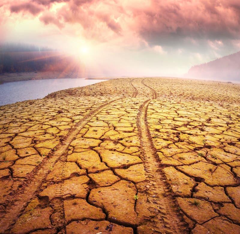 Estrada no deserto ecológico foto de stock royalty free