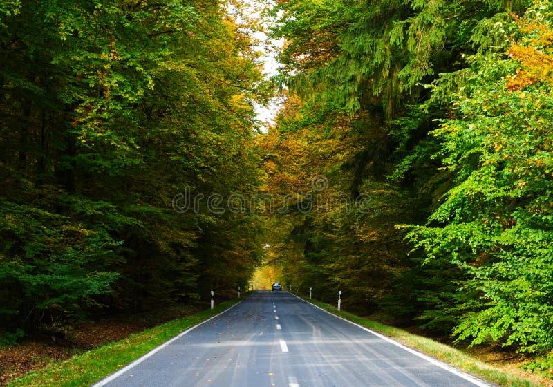 Estrada no outono fotografia de stock royalty free