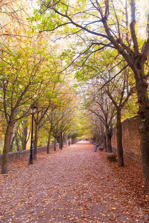 Estrada no outono foto de stock