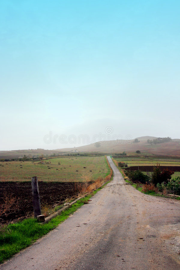 Estrada no país do outono imagens de stock royalty free