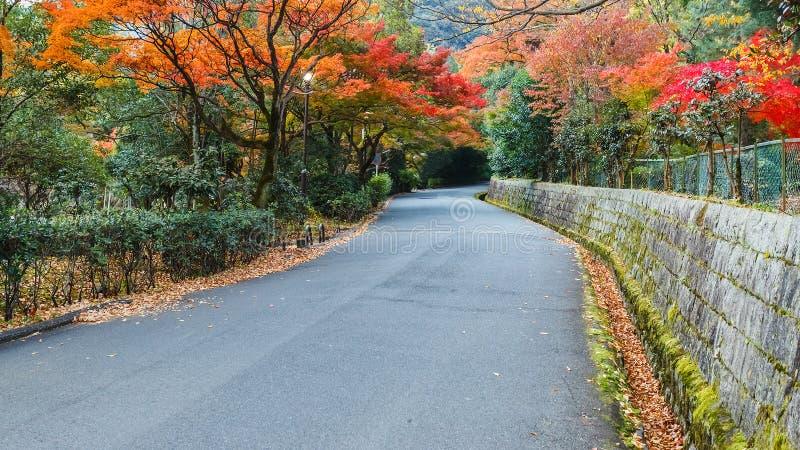 A estrada no parque de Maukama em Kyoto foto de stock