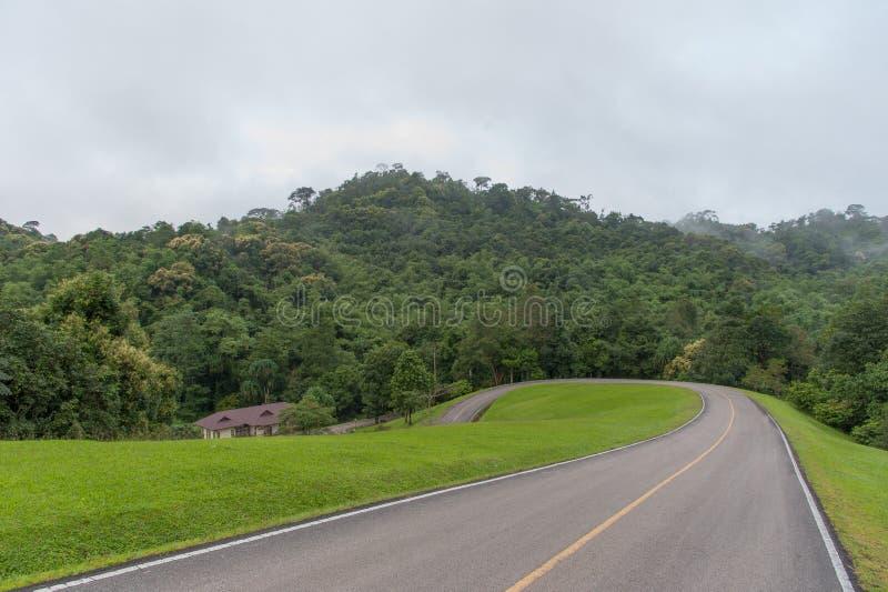 Estrada no parque nacional foto de stock royalty free