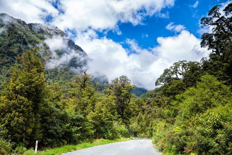 Estrada no parque nacional de Fiordland em Nova Zelândia imagem de stock royalty free