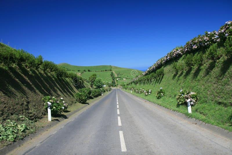 Estrada nos Açores imagem de stock