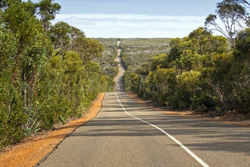 Estrada ondulada ventosa, estrada de Cabo du Couedic na ilha do canguru, Sou foto de stock royalty free