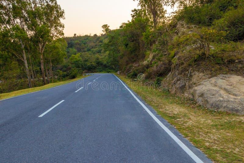 Estrada ou estrada s? atrav?s das ?rvores fotos de stock
