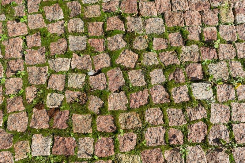 A estrada pavimentada com pedras ou musgo quadrados das pedras e do crescimento imagens de stock royalty free