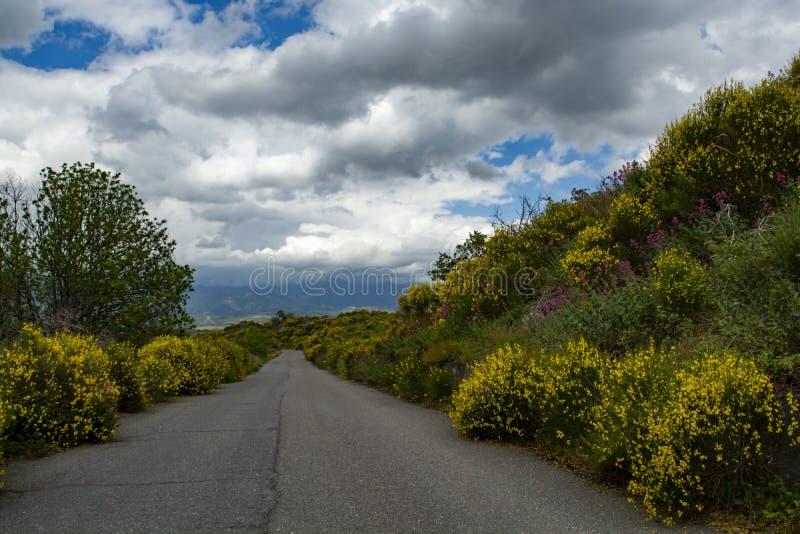 Estrada pequena cênico da montanha com as flores selvagens coloridas entre vilas na parte central da ilha de Sicília, Itália fotografia de stock royalty free