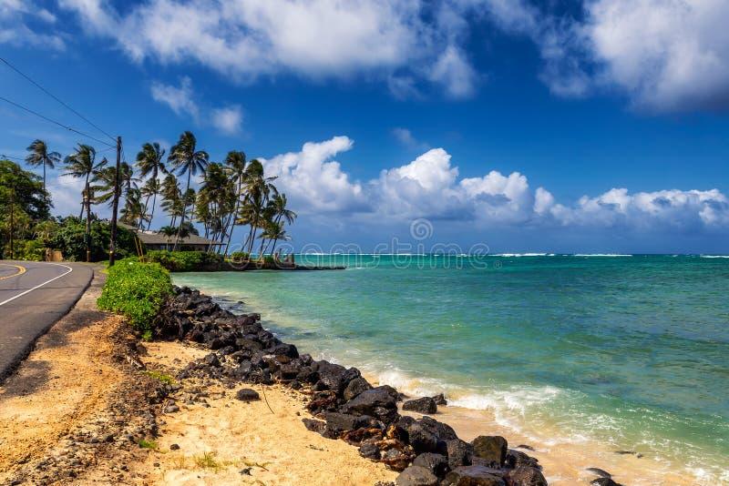 Estrada perto do oceano e palmeiras em Kualoa, Oahu imagens de stock