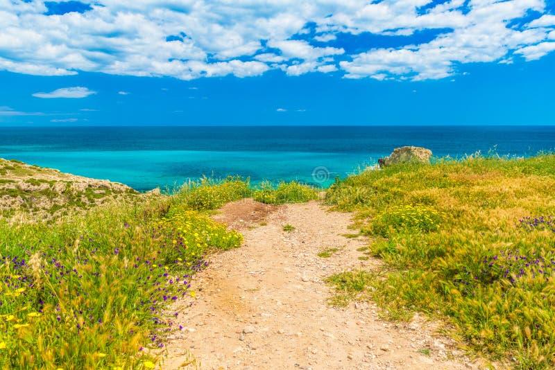Estrada pitoresca à paisagem bonita da costa de mar com água de turquesa, o céu azul profundo com nuvens, a grama e as flores de  fotos de stock