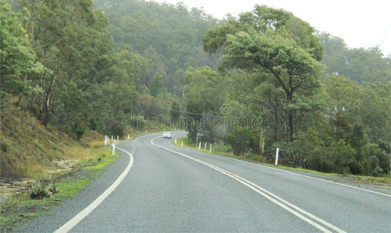 Estrada que conduz na estrada de enrolamento da curva, Tasmânia imagens de stock