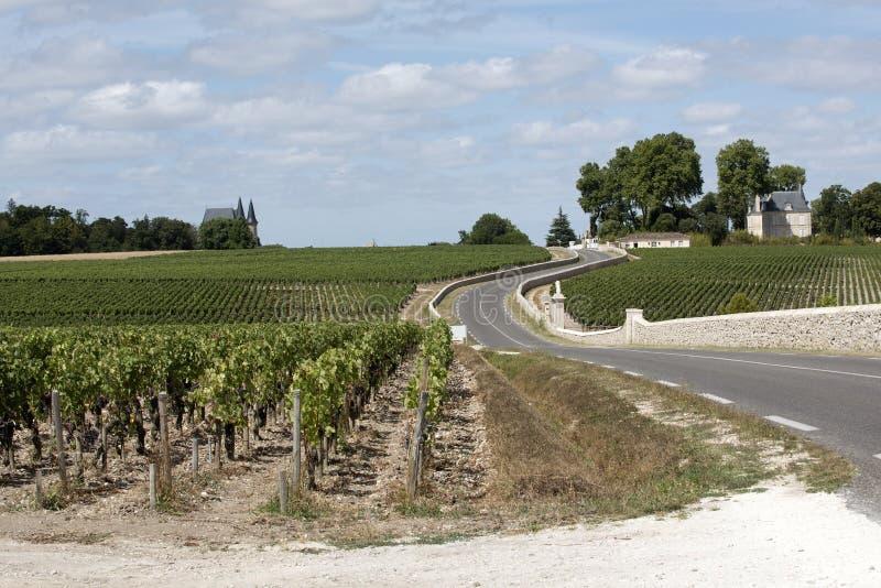 Estrada que passa através das videiras em Pauillac França imagem de stock royalty free