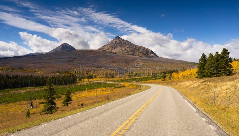 Estrada queimada da montanha de Yellowstone de dano de fogo do montanhês foto de stock
