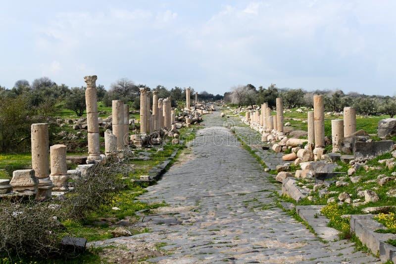 Estrada romana de Umm Qais em Jordânia fotografia de stock royalty free